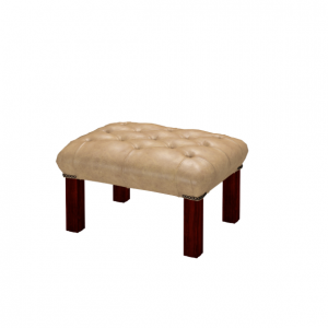 Georgian Footstool