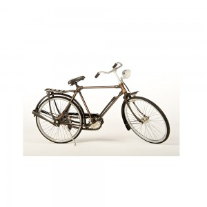Gents Metal Bike